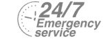 24/7 Emergency Service Pest Control in Hornsey, N8. Call Now! 020 8166 9746