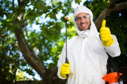 Pest Control in Hornsey, N8. Call Now 020 8166 9746